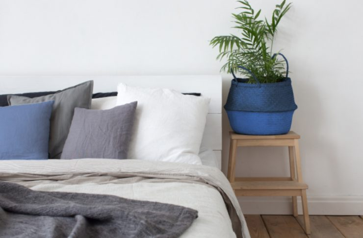 piante da interno per la camera da letto