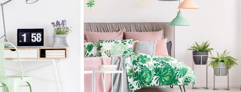 piante aromatiche in camera da letto